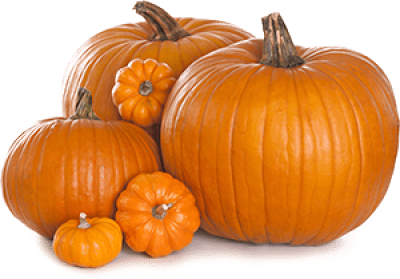 Canning, Cooking, or Jack-o-Lantern? Learn how to select the best pumpkins and gourds with this buying guide. #Canning #Cooking #JackoLantern #Pumpkin #Baking #Food #Halloween #Thanksgiving #Pie #PumpkinPie #Dessert #Shopping #BuyingGuide #HowTo
