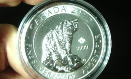 Diversify your IRA Portfolio with this 2017 Silver Grizzly Bear Coin