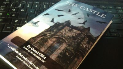 This Intermediate Reader Makes a Great Stocking Stuffer: The Castle by Omid Olfet