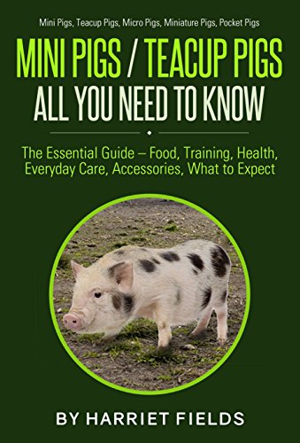 Mini Pigs - Teacup Pigs All You Need To Know - The Essential Guide
