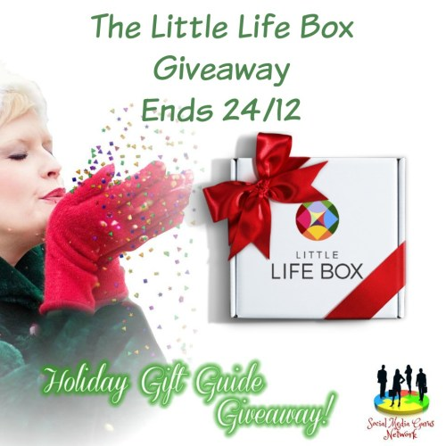 HOLIDAY GIFT GUIDE GIVEAWAY - Little Life Box Giveaway