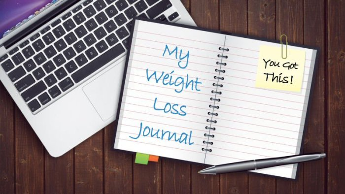 My Weight Loss Journal and Laptop - Weight Watchers Freestyle Week 18 – Exercise In The Summer Heat
