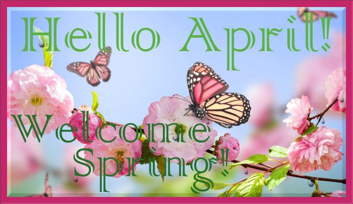 Stash Premium Green - Green Tea Benefits With Single Serve Convenience APRIL RAIN RAIN GO AWAY! Giveaway Hop - Hello April Welcome Spring