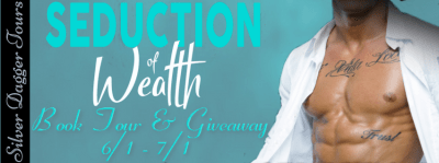 Seduction of Wealth Book Tour & $25 Amazon and Boxed Set Giveaway