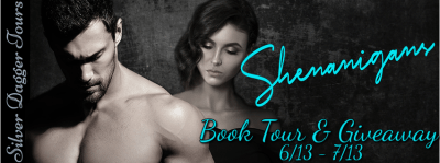 $25 Amazon Giveaway & Shenanigans Book Tour