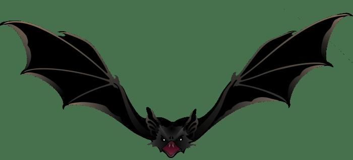 Transparent Bat