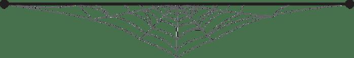 Spider Web Transparent Divider