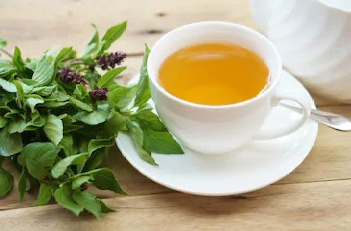 Teas For Digestion - Ease Your Stomach With These Teas - Holy Basil Tea