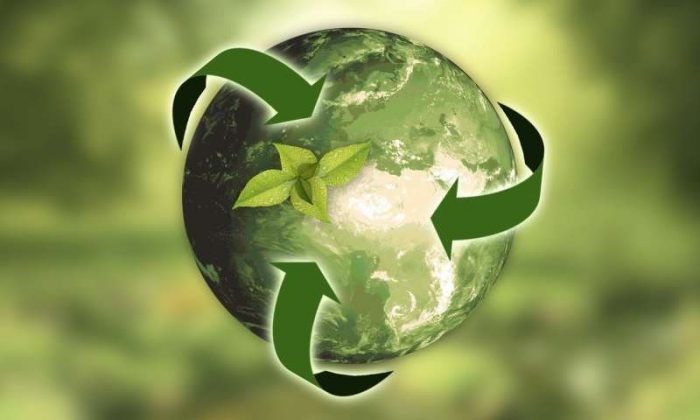 Replacing the Least Sustainable Products You Use Regularly - Green Earth