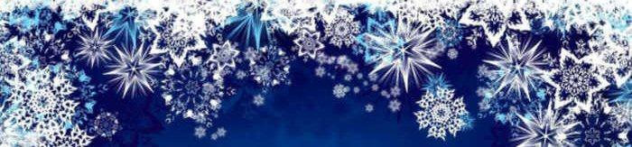 2019 Holiday Gift Guide Snowflake Divider