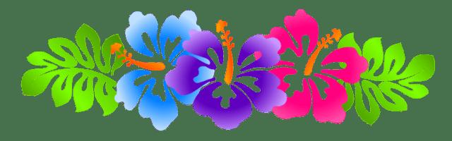 Hibiscus - Hawaiian Flower Border Divider