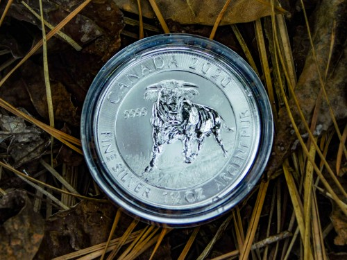 OMG! This Silver Canadian Majestic Bull Standing in the Tundra Coin Is Stunning!