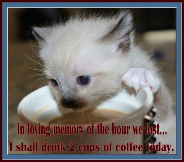 In loving memory of the hour we lost...I shall drink 2 cups of coffee today,