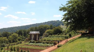 Back Road Trips: The Heritage Harvest Festival at Monticello