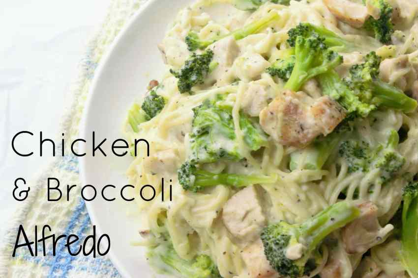 Chicken & Broccoli Alfredo - Sweet Tea & Thyme