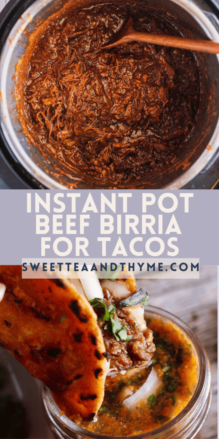 pinterest pin for the best instant pot  birria