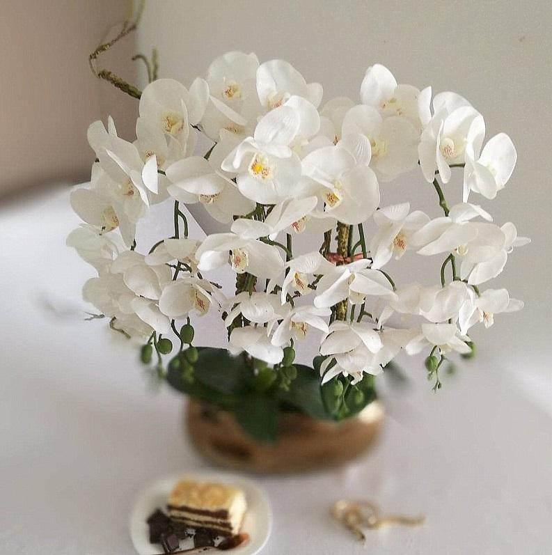 Biały storczyk w złotej donicy