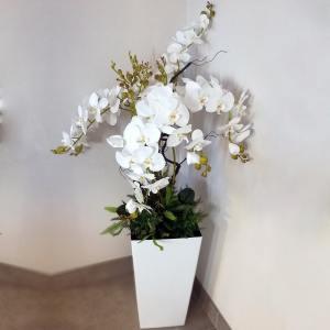 Biała, duża kompozycja ze storczykami