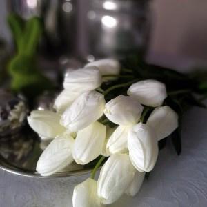 Białe tulipany 15 sztuk, Białe tulipany bukiet 15 sztuk