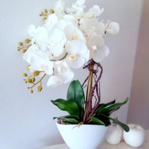 Białe storczyki w białej donicy nr 342