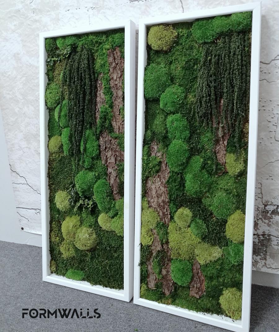 Obraz z mchów stabilizowanych typu forest 100 x 40 cm