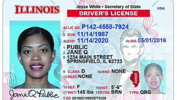 New Illinois Driver's License