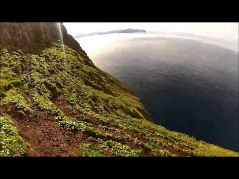 Behold these Faroese guys herding sheep on a steep, steep cliff terrace