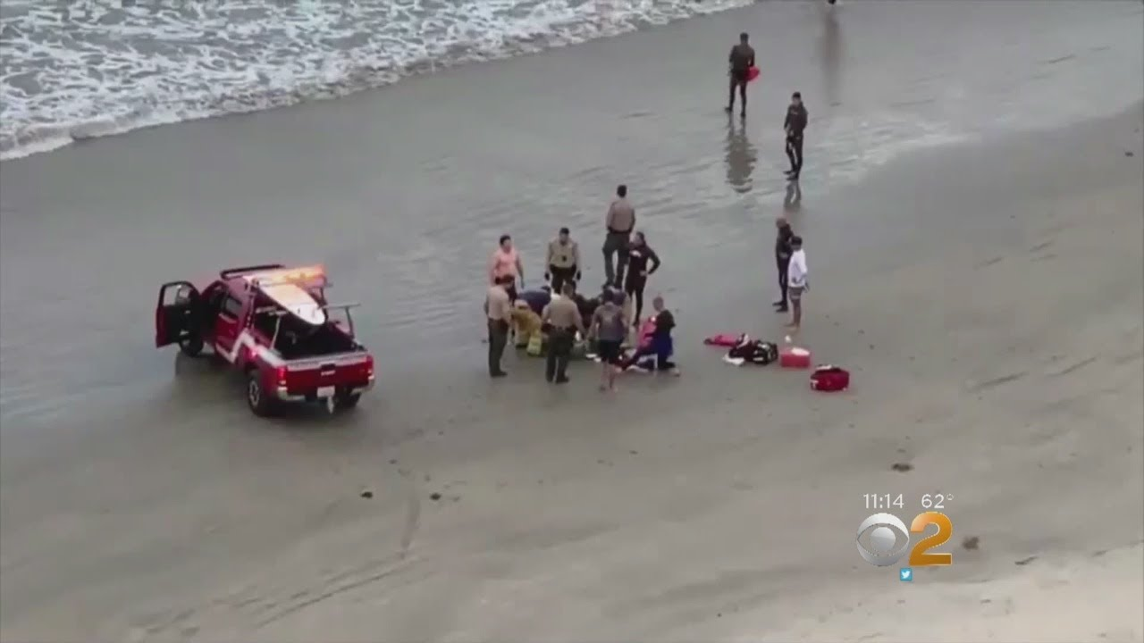 13 Year Old Boy Suffers Traumatic Injuries After Shark Attack Off California Coast Swimmer S Daily