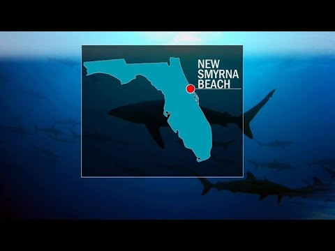 3 people bitten by sharks at Florida beach | Swimmer's Daily