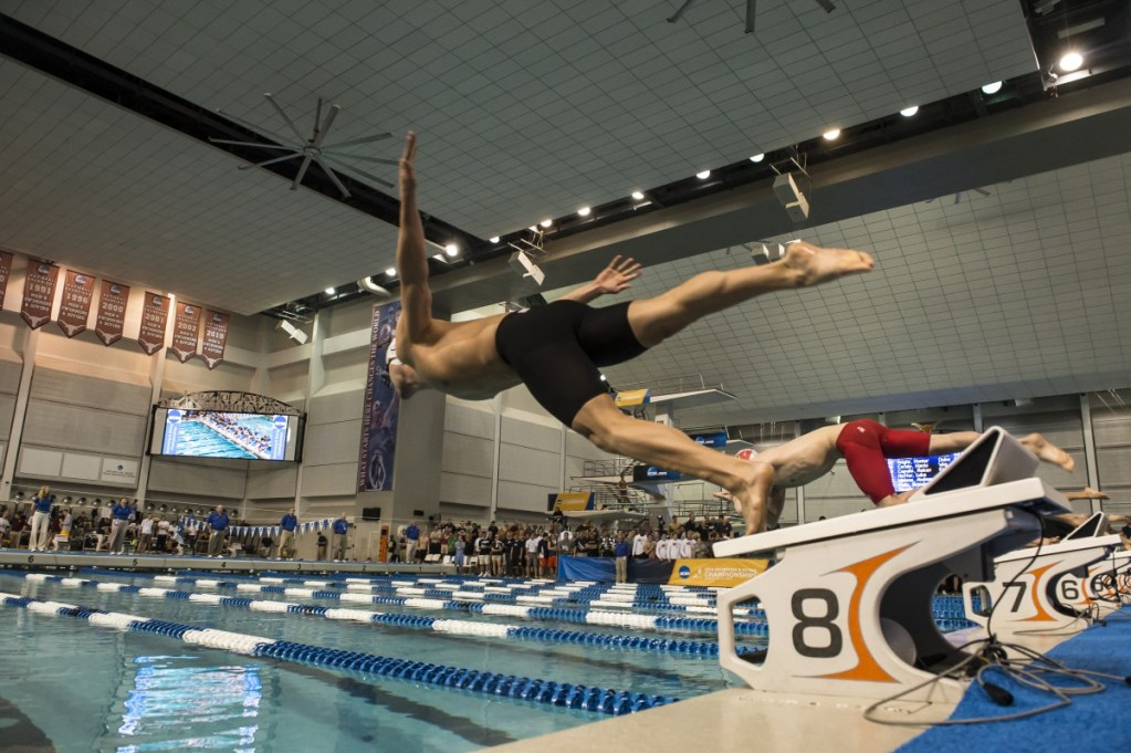 NCAA Men's DI Swimming And Diving Championships