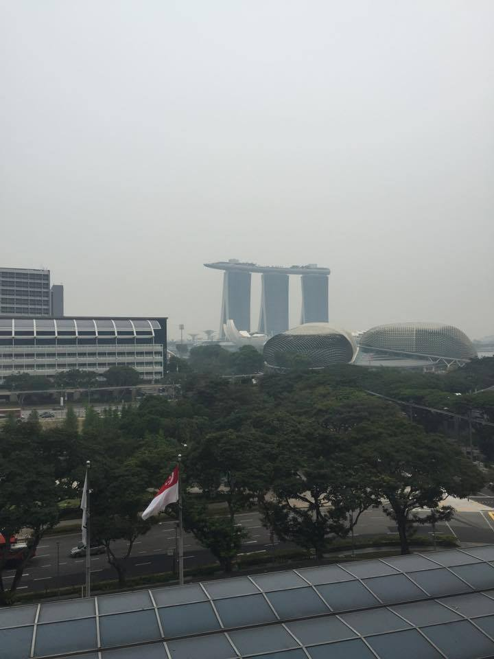 2015-fina-world-cup-singapore-haze (2)