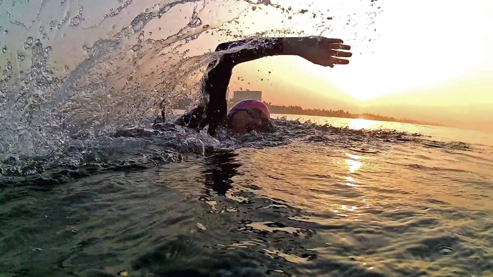 Challenges of Open Water Swimming in a Polluted Ocean