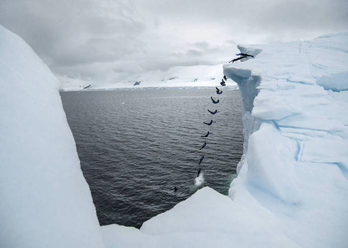 Orlando Duque dives during a trip to Antarctic on January 17, 2018 // Andreas Vigl / Red Bull Content Pool // AP-1VPMQMXYH2111 // Usage for editorial use only // Please go to www.redbullcontentpool.com for further information. //