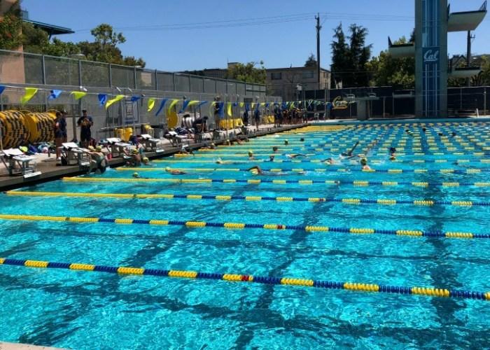 cal-swim-camp