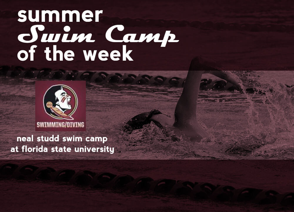 Neal Studd Swim Camp Florida State University