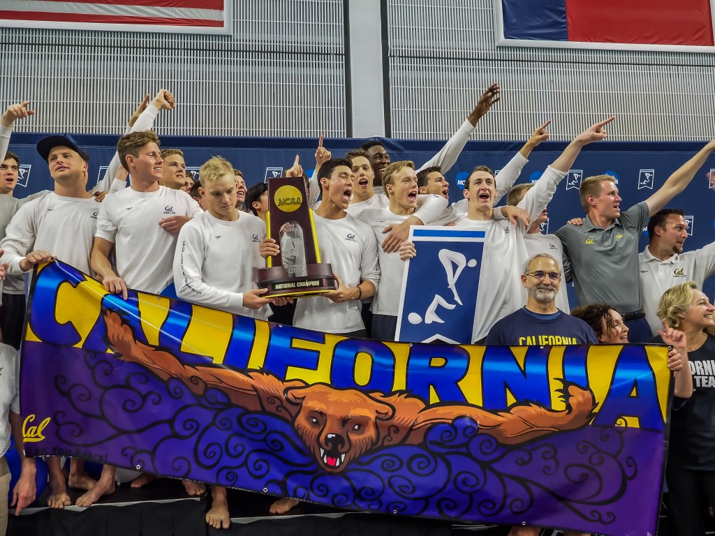 california-champions-, cal, ncaa swimming