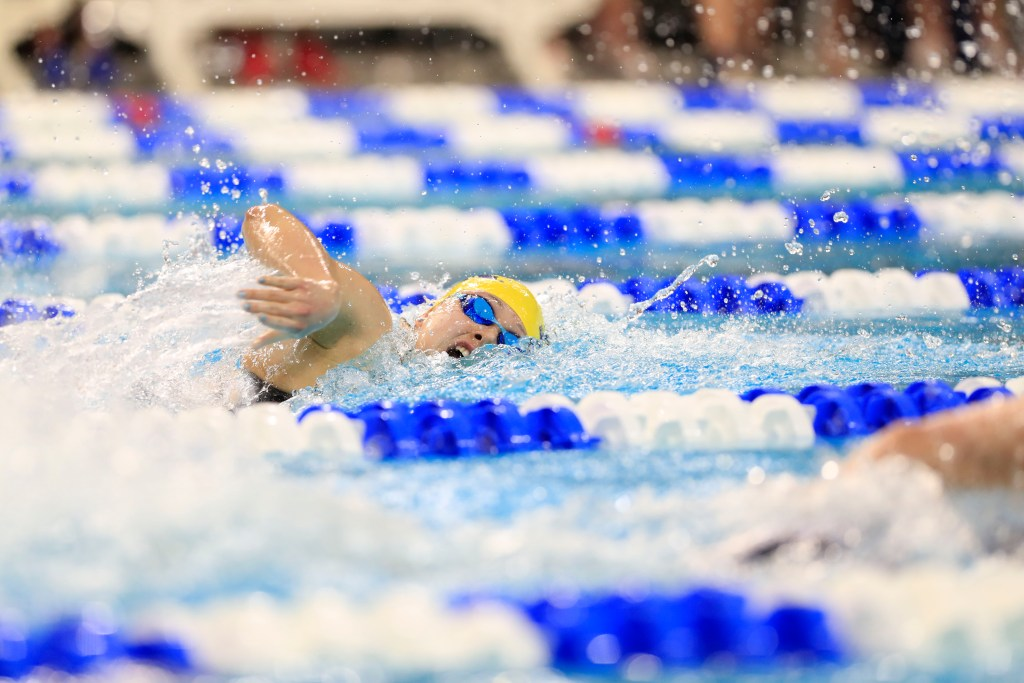 3/22/19 2018-19 women's swimming and diving team compete on the third day of the 2019 women's NCAA National Championships. Hosted at the Lee and Joe Jamail Texas Swimming Center in Austin, TX. SDW 2018-19