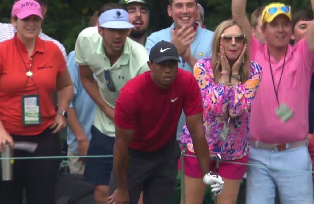 michael phelps, tiger woods, michael phelps comeback