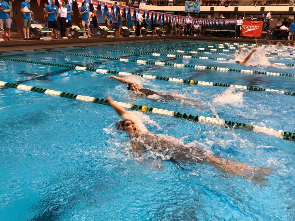 100back-swim