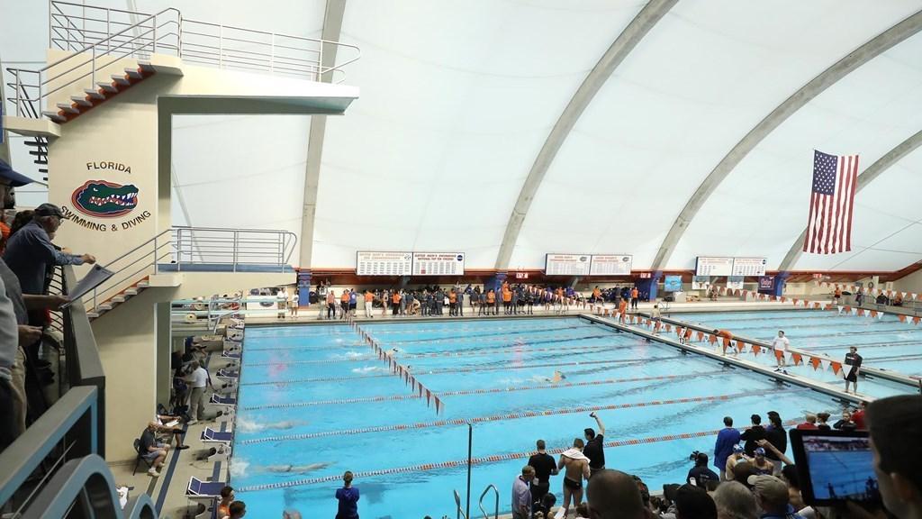 florida-pool-annette-schultz