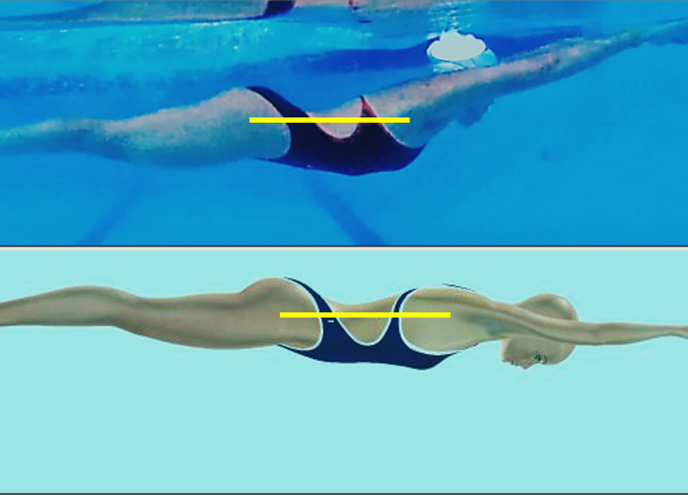 SW August 2020 - Swimming Technique Concepts - Development of an Optimal Model For Technique - Part VIII-- Body Base of Support For Breaststroke By Rod Havriluk