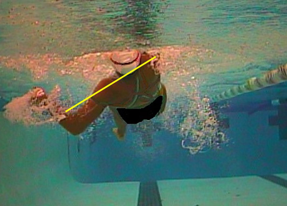 Swimming World November 2020 Swimming Technique Concepts 1