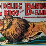 Crouching lion on Ringling Bros and Barnum & Bailey poster