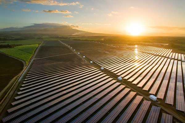 Solar-Field-Cadiz