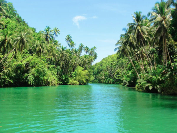 Picture-5-Loboc_river
