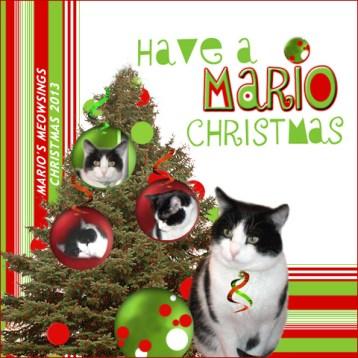 Mario, Holidays 2013 ECard Post Size