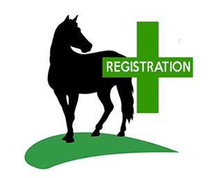 Equine Microchips (Registered)