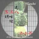 toshi238