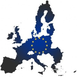 Naringslivet staller krav efter euronej