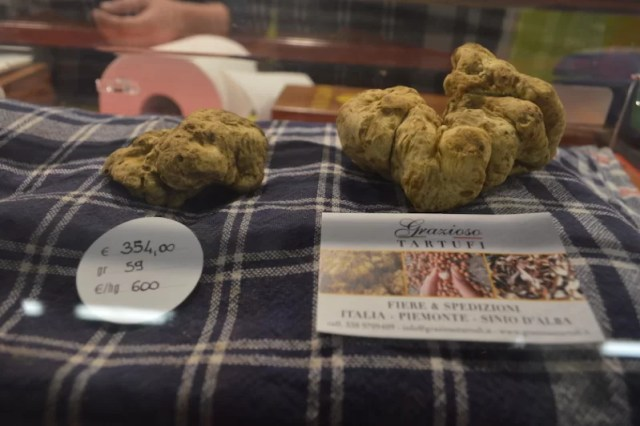 Up close at the International White Truffle Festival of Alba, Italy